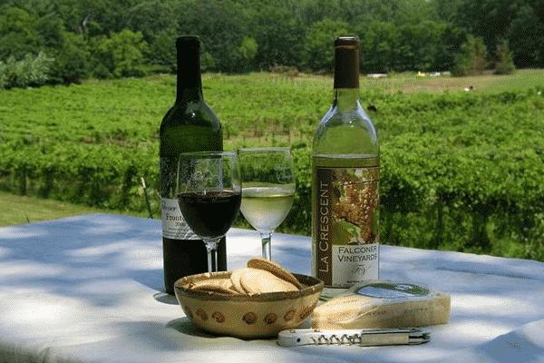 Falconer Vineyards